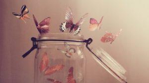 Butterflies in Jar